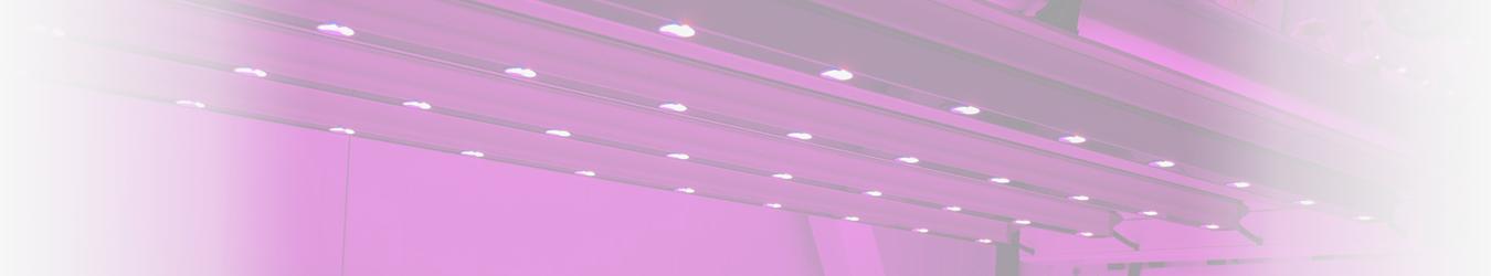 Bajo consumo y Fluorescentes
